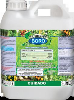 Envase-4L-Boro