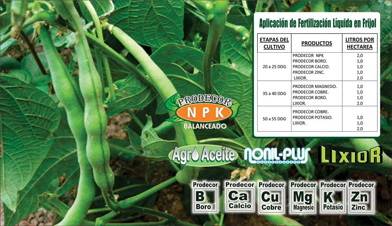 Plan-de-Fertilizacion-de-Frijol