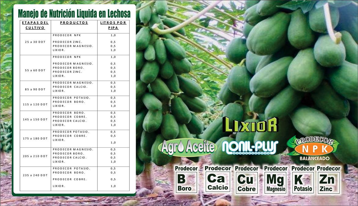 Plan-de-Fertilizacion-de-Lechoza