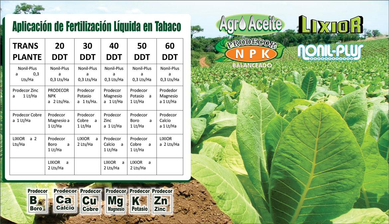 Plan-de-Fertilizacion-de-Tabaco